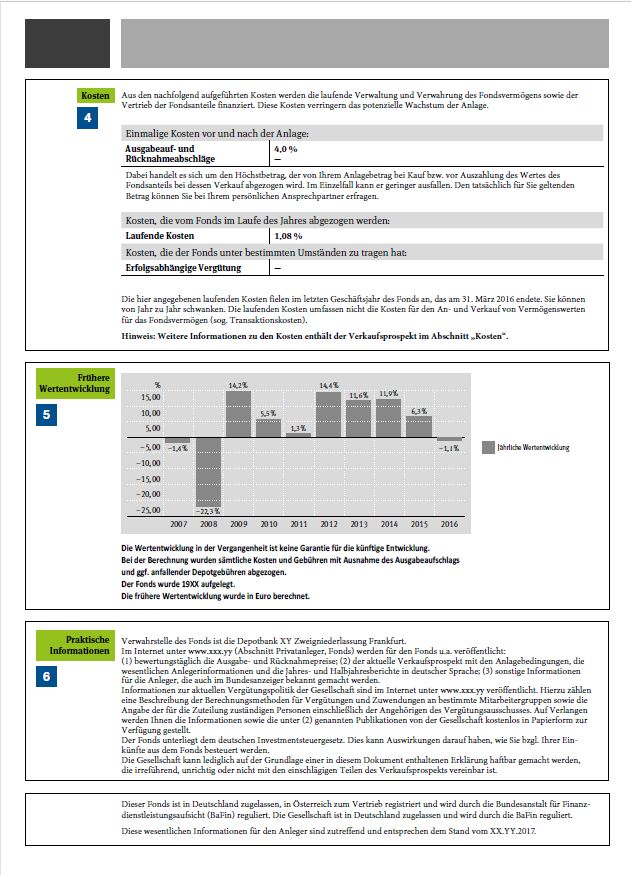 Wwesentliche Anlegerinformationen beschreiben die Kosten, die Wertentwicklung und geben praktische Hinweise für den Investemtnfonds.